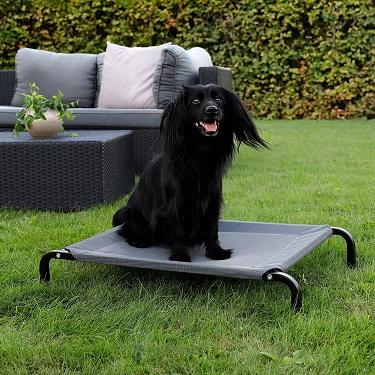 camas elásticas para perro lionto