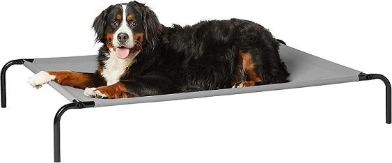 camas elásticas para perros y camas elásticas feria